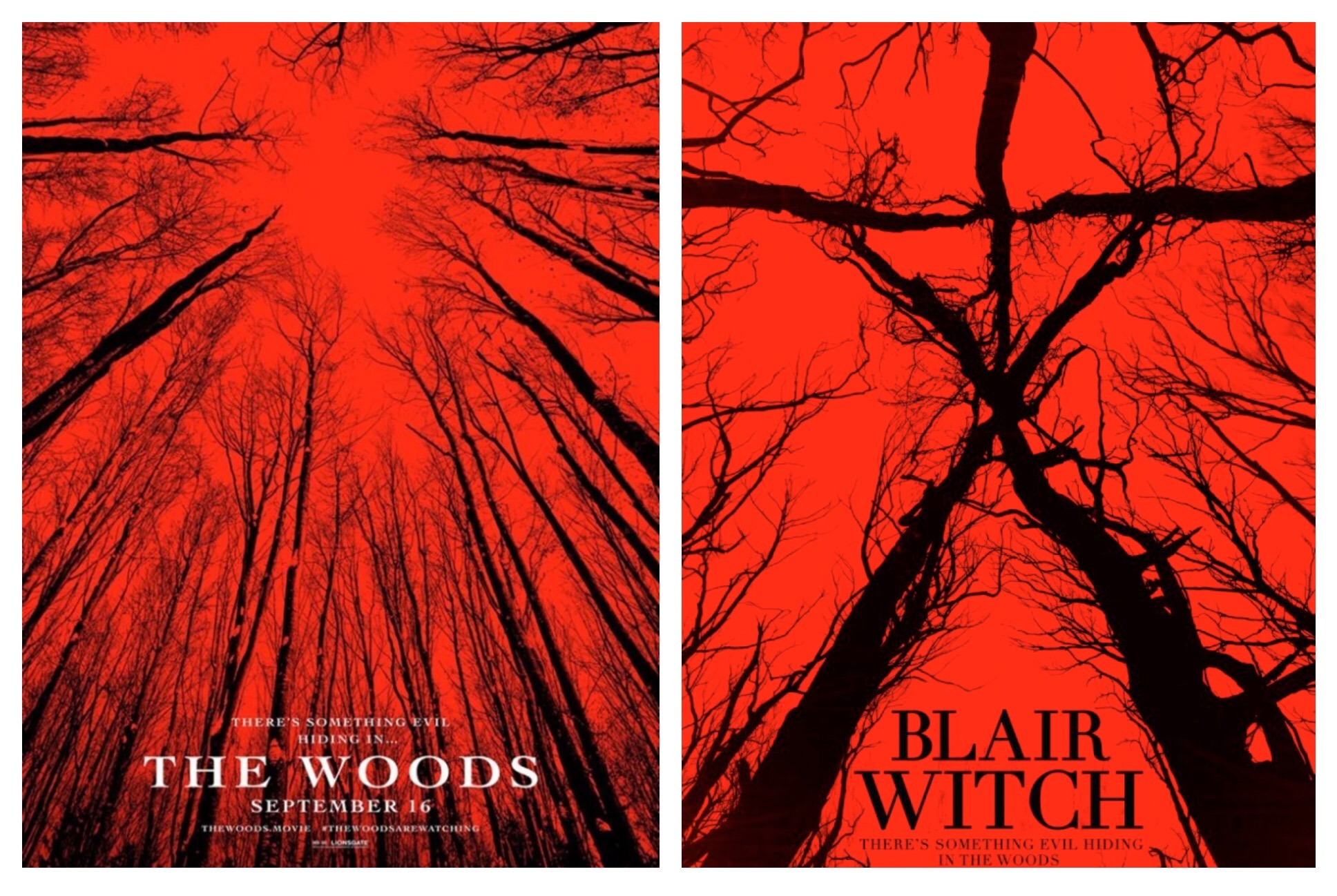 WoodsBlairWitch